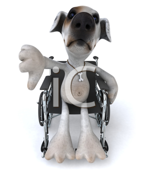 Royalty Free Clipart Image of a Jack Russell in a Wheelchair Giving a Thumbs Down