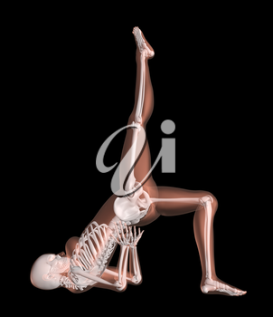 3D render of a female medical skeleton in a yoga position