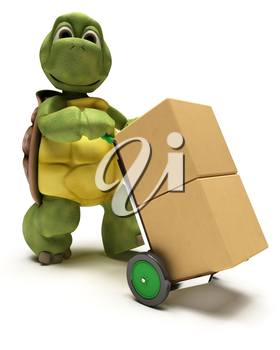 3D render of a Tortoise with boxes for shipping