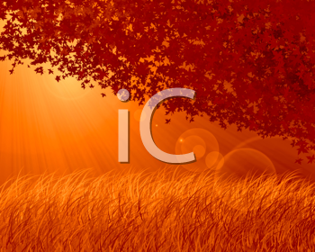 Abstract forest background, autumn theme