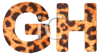 Royalty Free Clipart Image of Leopard Print G and H