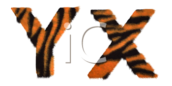 Royalty Free Clipart Image of Tiger Fell Font X and Y