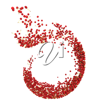 Red cherry flow isolated over white background