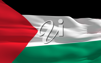 Royalty Free Clipart Image of the Flag of Palestine