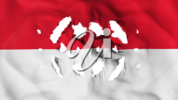 Monaco flag with a small holes, white background, 3d rendering