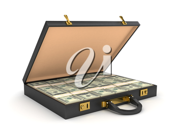 3d open case with money. computer generated image