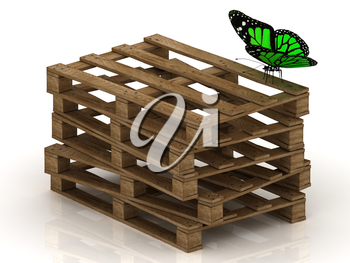 Green butterfly is sitting on a stack of wooden pallets on the white background
