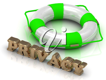 PRIVACY - bright gold letters and color life buoy on a white background