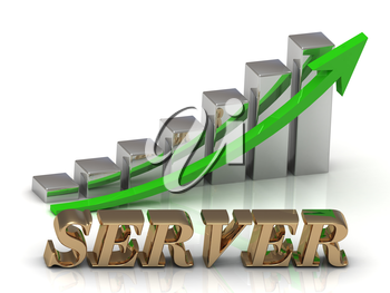 SERVER- inscription of gold letters and Graphic growth and gold arrows on white background