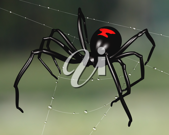 Royalty Free Clipart Image of a Black Widow Spider