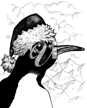 Royalty Free Clipart Image of a Penguin with a Santa Hat