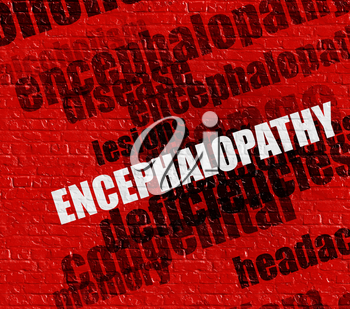 Modern healthcare concept: Encephalopathy - on Brickwall with Word Cloud Around . Encephalopathy on the Red Brick Wall .