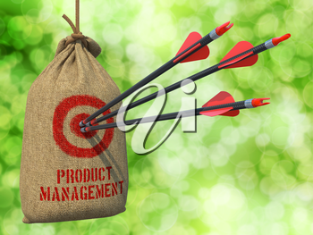 Product Management- Three Arrows Hit in Red Target on a Hanging Sack on Green Bokeh Background.
