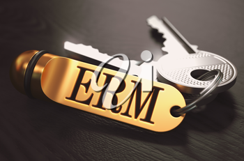ERM - Enterprise Risk Management - Bunch of Keys with Text on Golden Keychain. Black Wooden Background. Closeup View with Selective Focus. 3D Illustration. Toned Image.