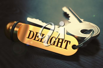 Delight Concept. Keys with Golden Keyring on Black Wooden Table. Closeup View, Selective Focus, 3D Render. Toned Image.