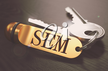 Keys and Golden Keyring with the Word SEM - Search Engine Marketing - over Black Wooden Table with Blur Effect. Toned Image.