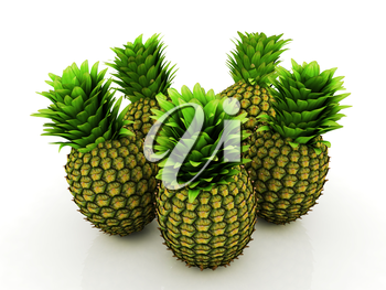 pineapples on a white background