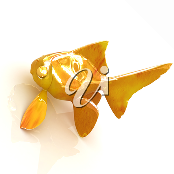 Gold fish on a white background