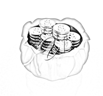 Bag and dollar coins on a white background