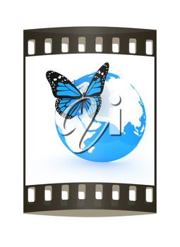 Earth and butterfly on white background. The film strip