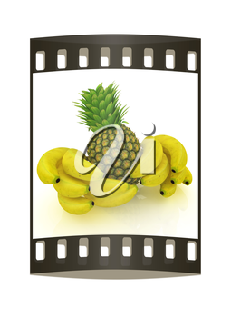 pineapple and bananas on a white background. The film strip