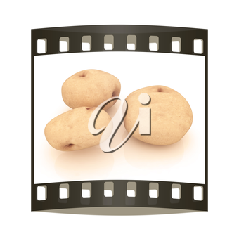 potato on a white background close up. The film strip