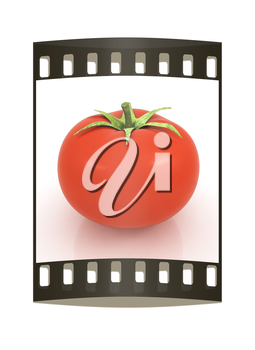 tomato on a white background. The film strip
