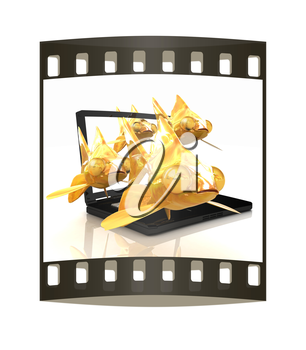 Gold fishea and laptop on a white background. The film strip