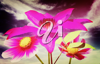 Beautiful Cosmos Flower against the sky. 3D illustration. Vintage style.