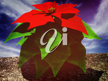 Beautiful poinsettia Flower against the sky. 3D illustration. Vintage style.