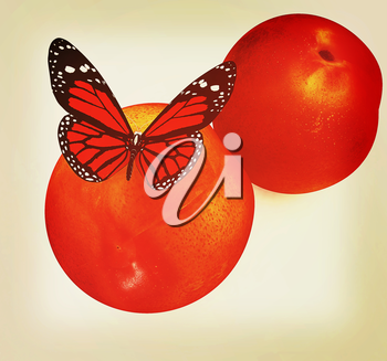 Red butterflys on a fresh peaches on a white background . 3D illustration. Vintage style.