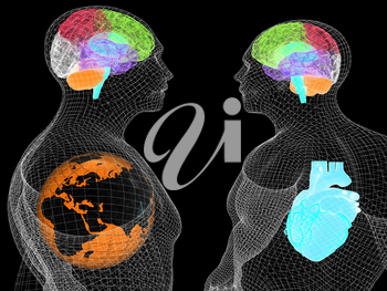 Wire human body model with heart and brain in x-ray. 3d render. Global medical concept with Earth. 3d render. On a black background.