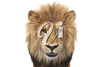 Lion head wild beige and orange hair, close view. 3D rendering