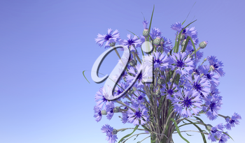 Cornflowers in blue sky background. 3D illustration