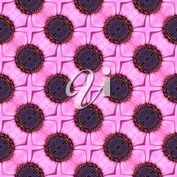 Abstract floral seamless pattern with purple flowers.